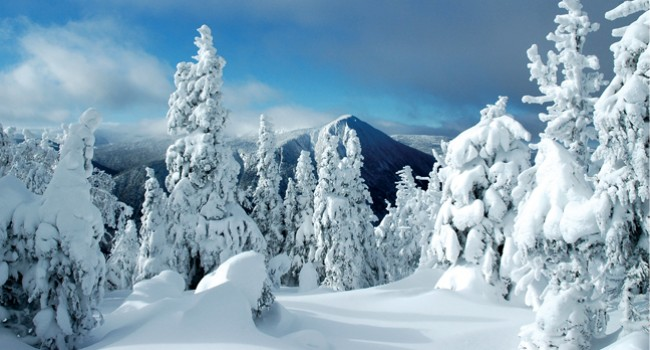 Chic-Chocs : l'hiver à son meilleur