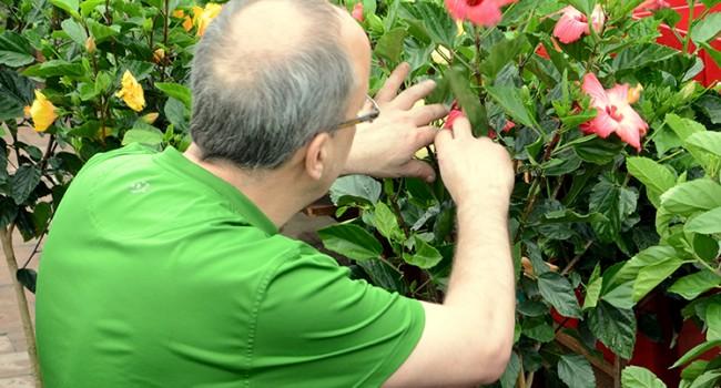 10 astuces pour jardiner à tout âge