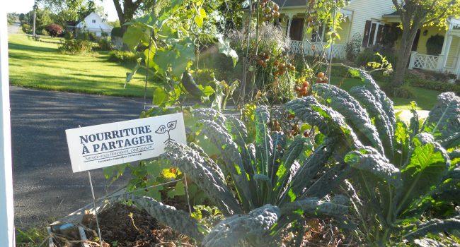 Les Incroyables comestibles: cultiver pour partager
