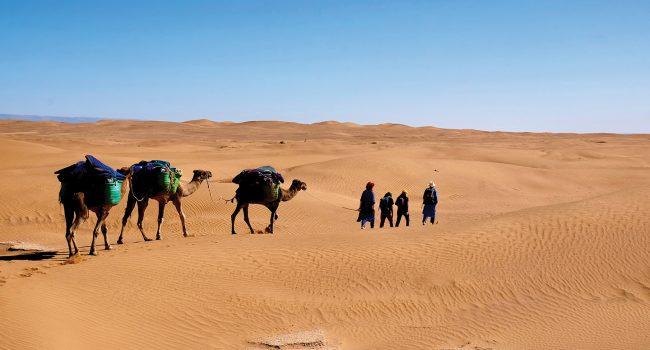 En randonnée dans le désert marocain