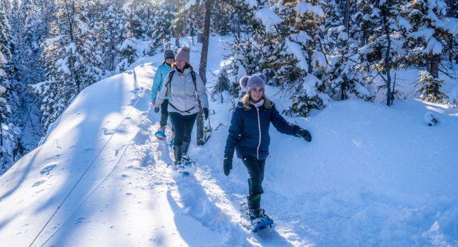 5 paradis pour le ski de fond et la raquette